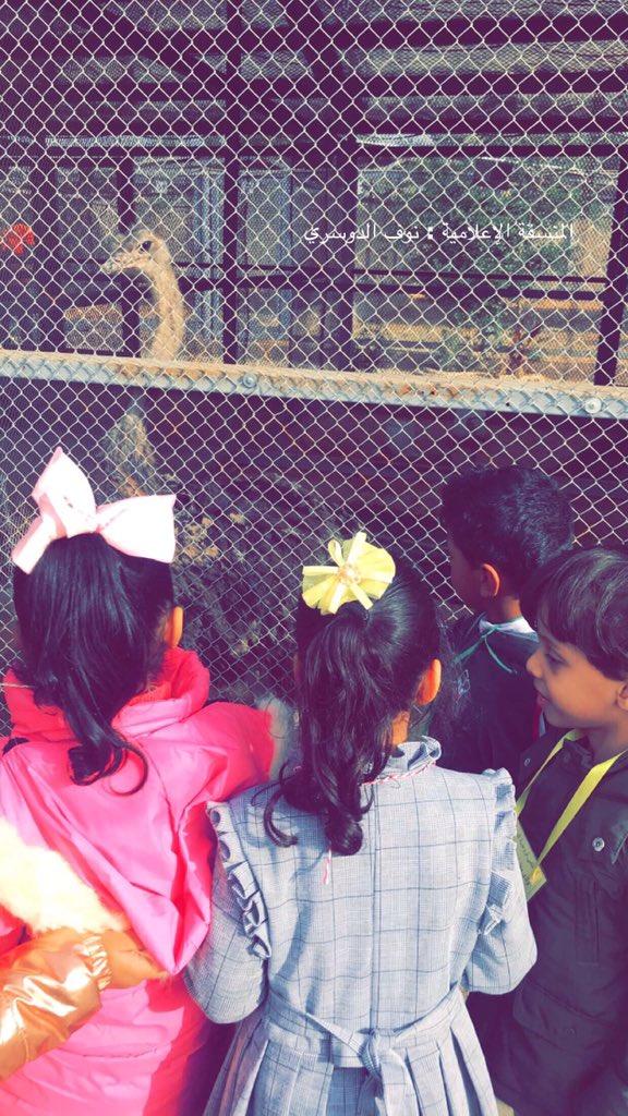 رحلة لأطفال الروضة الى (محمية المها)
